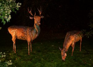 stag and doe sculptures