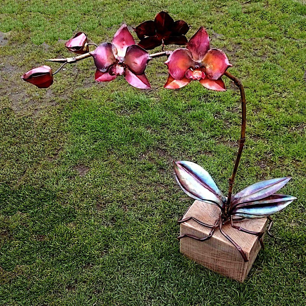 phalaenopsis orchid sculpture