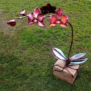 phalaenopsis orchid sculpture