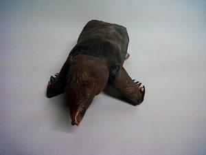 mole sculpture
