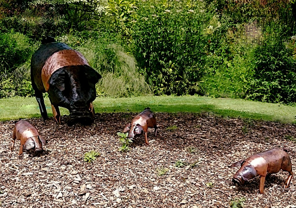 saddleback pig sculpture