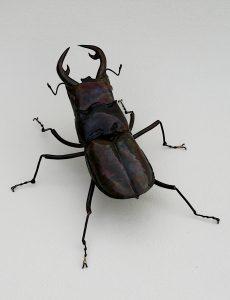 stag beetle sculpture