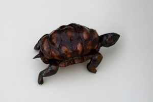 tortoise sculpture